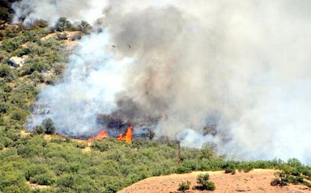 Dersim'deki yangınları söndürmek isteyen halka asker engeli
