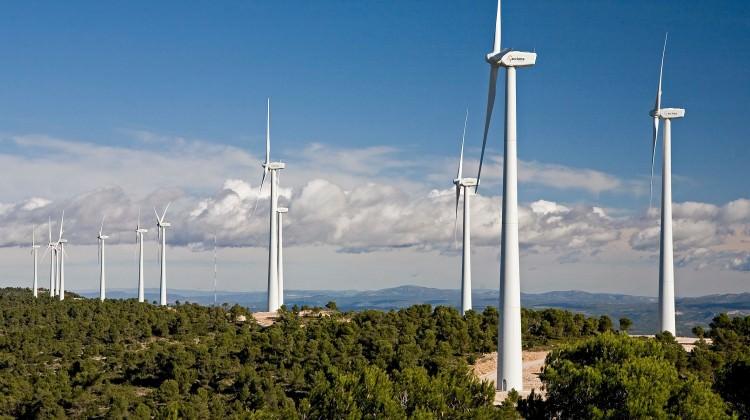 Ormanları RESlerle işgale hazırlanan AKP iktidarı Alman sanayi devi Siemens'i de yanına ortak aldı!