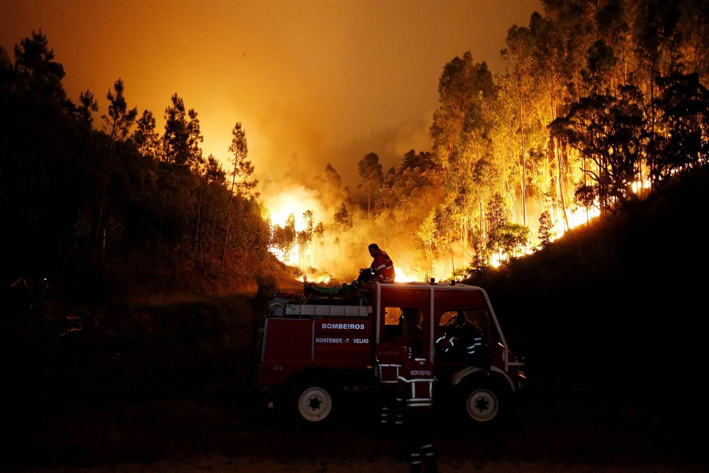 Portekiz ormanları alevler içinde, hükümet afet durumu ilan etti!