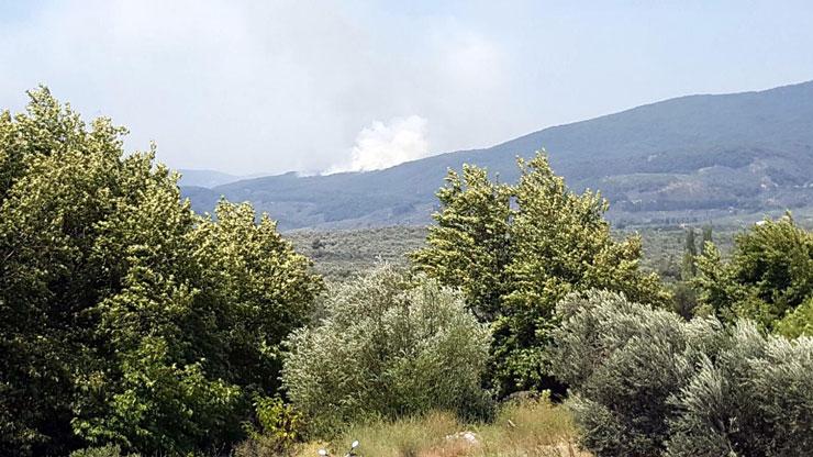 Kazdağları'ında yine 4 ayrı yerde yangın, yine kundaklama şüphesi