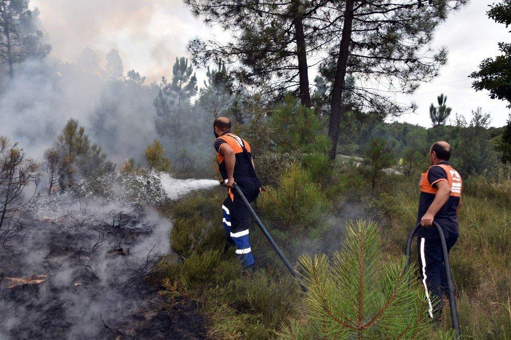 İstanbul Kuzey Ormanları Kurna köy mevkiinde çıkan yangın hemen söndürüldü
