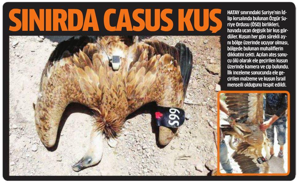 Son casus: Kızıl akbaba
