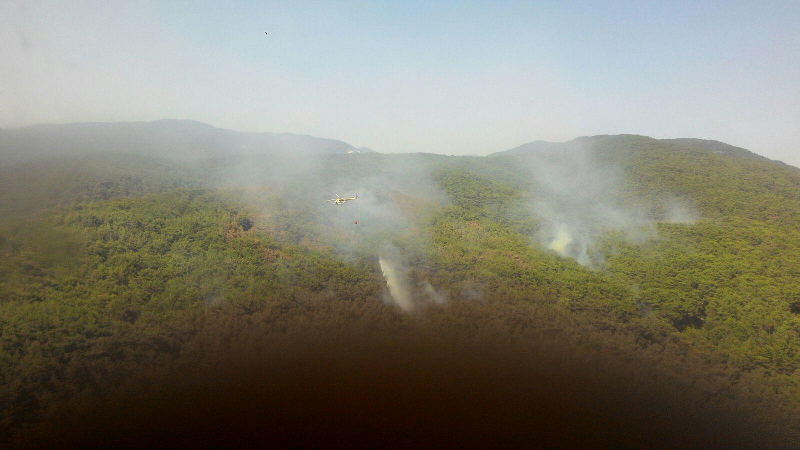 """Edremit Belediye Başkanı Kamil Saka; """"Kazdağları yangınında kundaklama olduğundan şüpheleniyoruz!"""""""