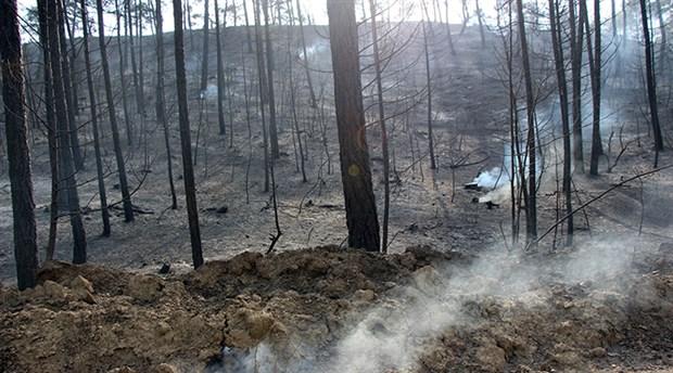 Bolu'da 2 gün süren yangında 100 hektar ormanlık alan kül oldu