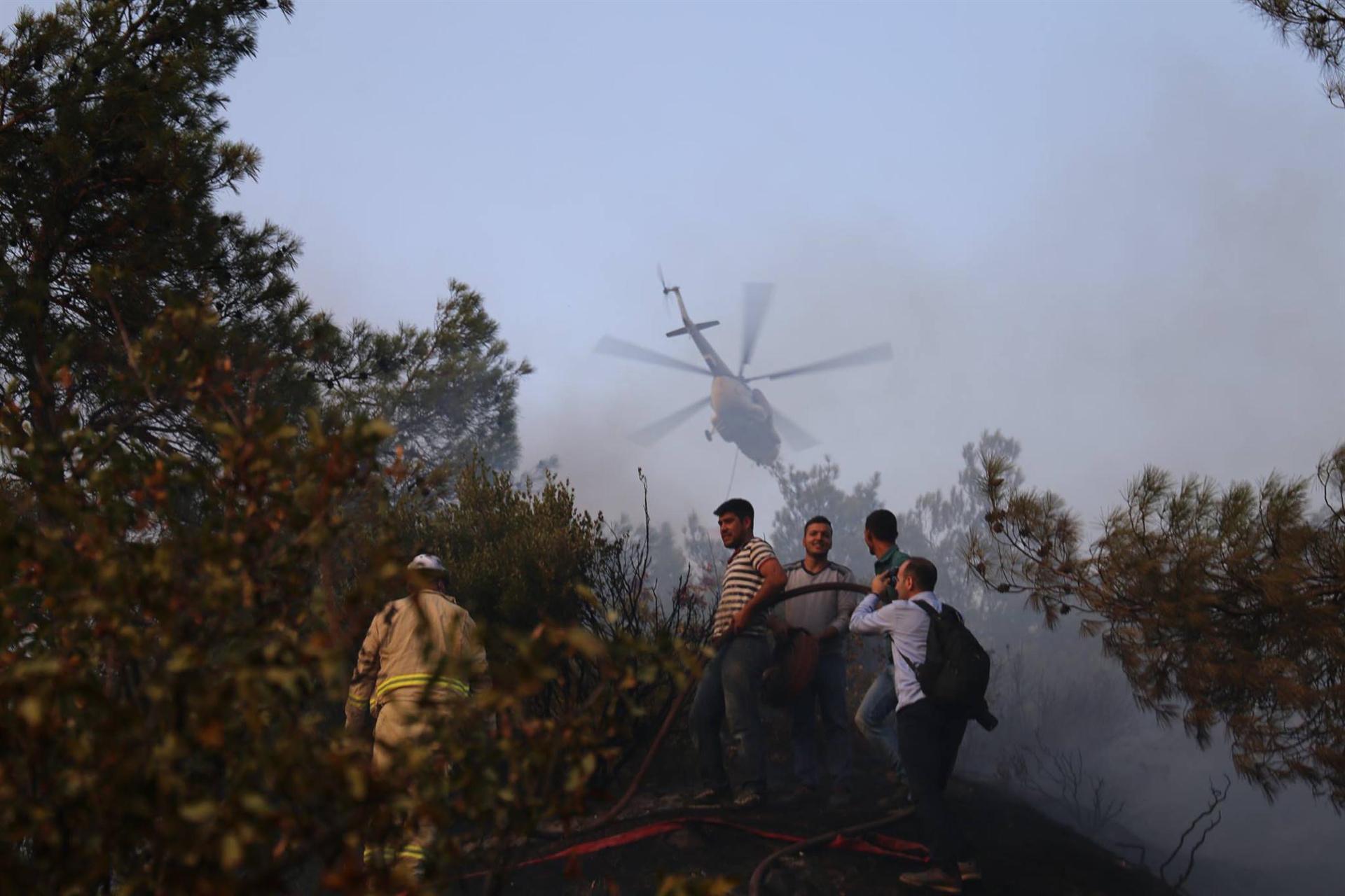 Manisa'daki orman yangınında 2 hektar alan tahrip oldu