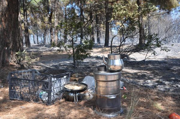 Tekirdağ'da mangal ateşi 10 hektar orman alanını tahrip etti