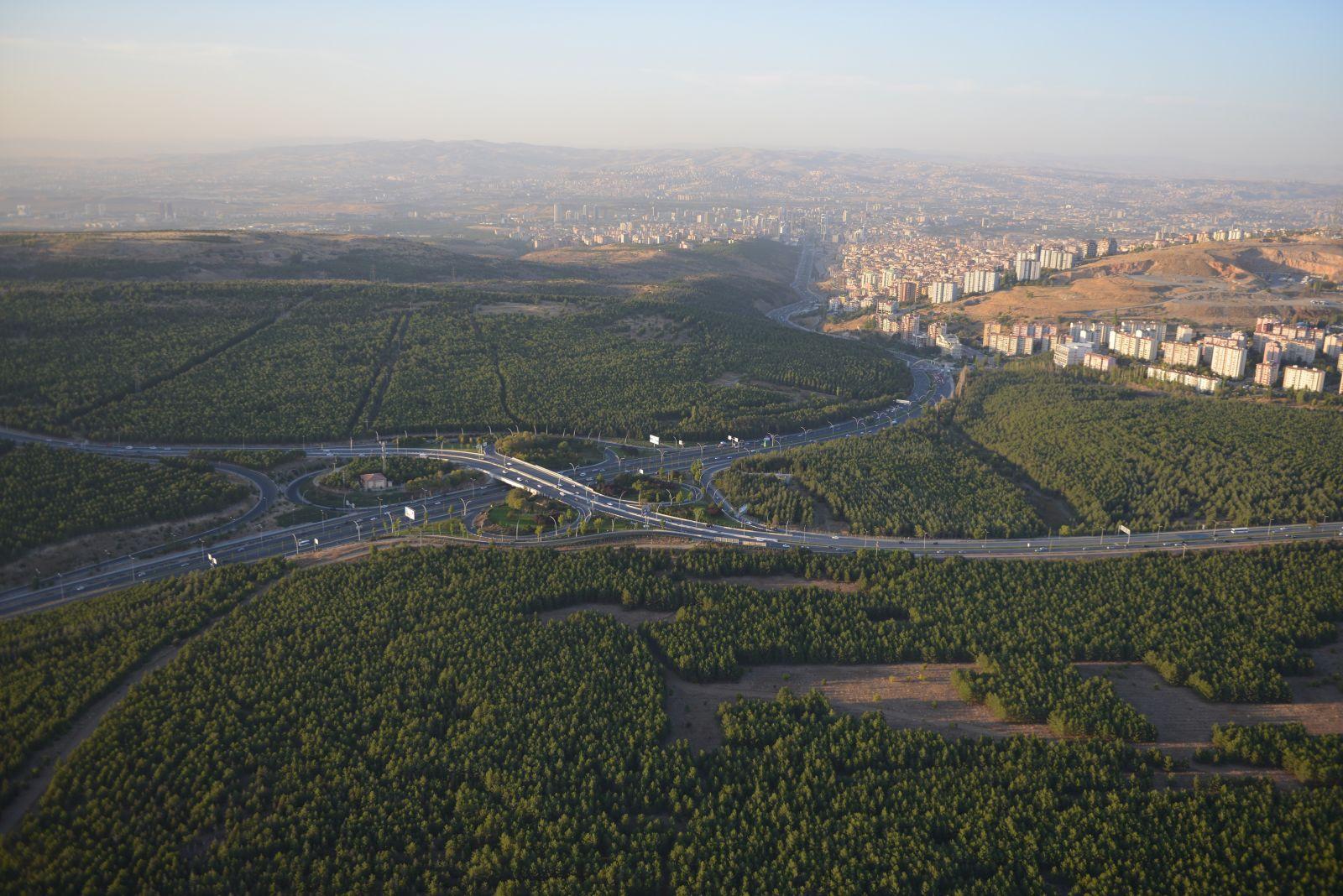 Gökçek ODTÜ ormanını tümüyle yok etmeyi mi planlamaktadır?