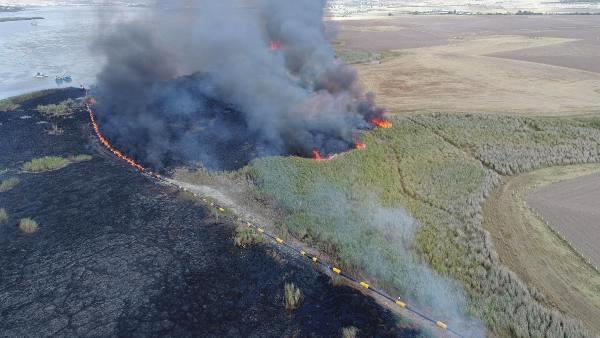 Ankara'nın kuş cenneti Mogan Gölü çevresinde çıkan yangın 700 dönüm sazlık alanı tahrip etti