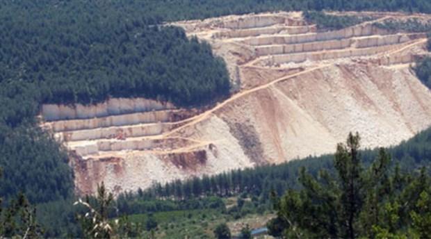 Ormanların ölümü ekonomiye can, iktidara nefes veriyor