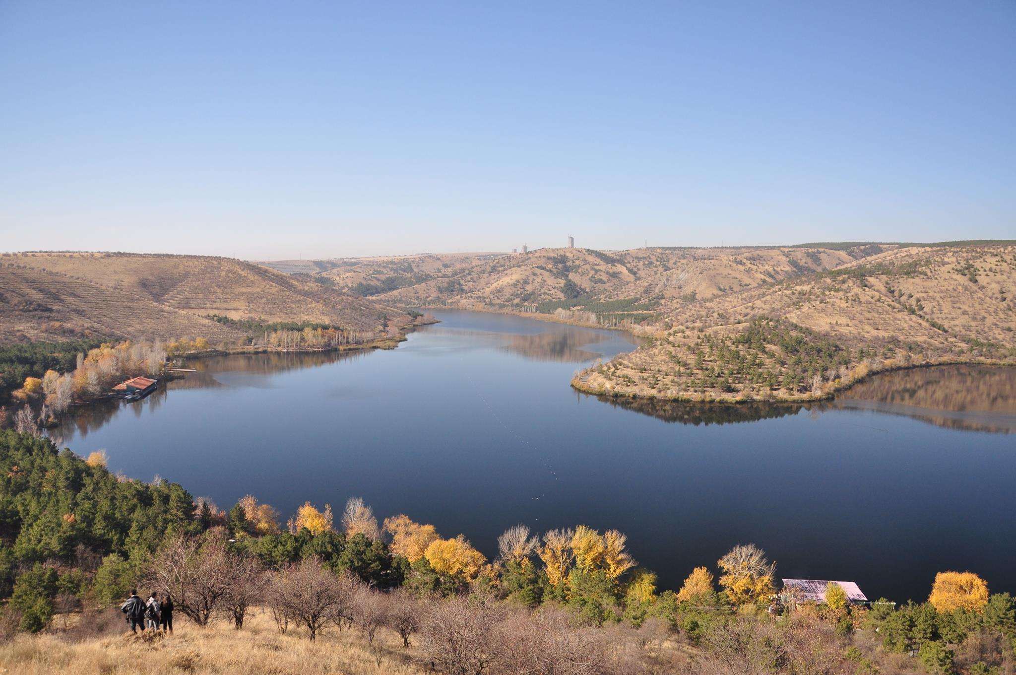 Kuş gözlemcileri, Ankara doğasını ve ODTÜ Ormanını korumak için buluşuyor. Toplantı 24 Ekim'de…