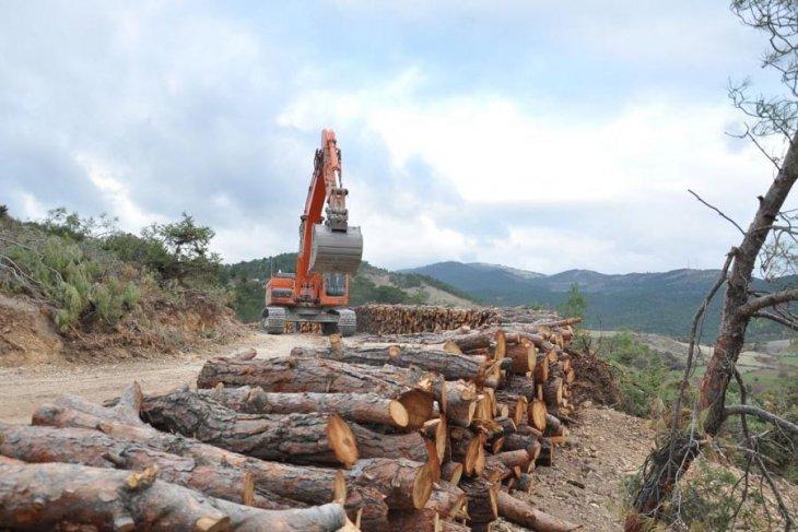 Torba Yasa ile ormanlar madenlere feda ediliyor!