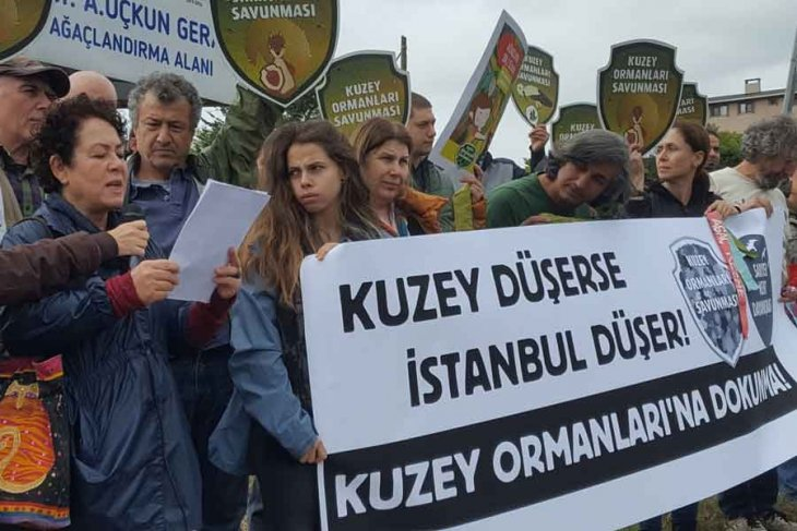 'Uskumruköy'e, Kuzey Ormanları'na dokunma'