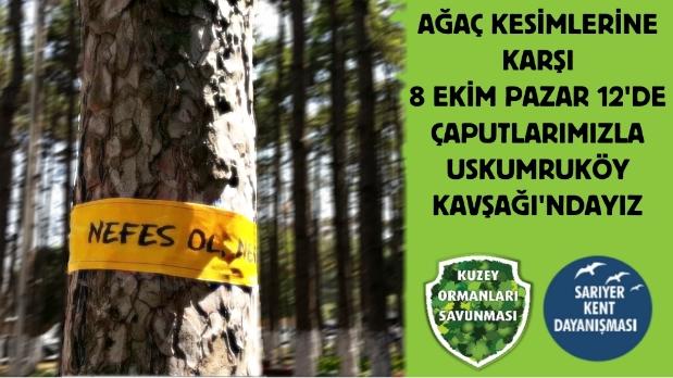 Pazar 12'de Uskumruköy'deki kesimlere karşı Uskumruköy Kavşağı'na ağaçların dili olmaya!