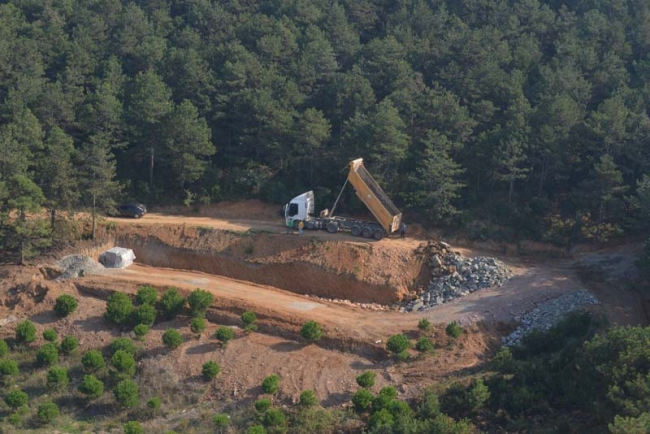 Kuzey Ormanları'na ihanet tam gaz: Ormanı mesire pazarına çeviriyorlar!