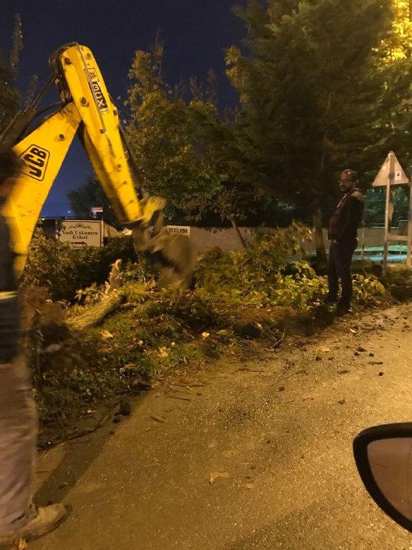 Uskumruköy Kavşağı'nda ikinci perde: Yaşam savunucularına saldırı ve bıçakla yaralama