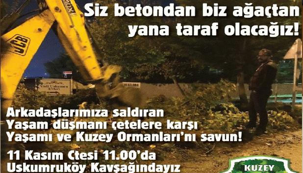 Dostlarımıza saldıran, ağaçları katleden çetelere karşı Cumartesi 11'de Uskumruköy Kavşağı'ndayız