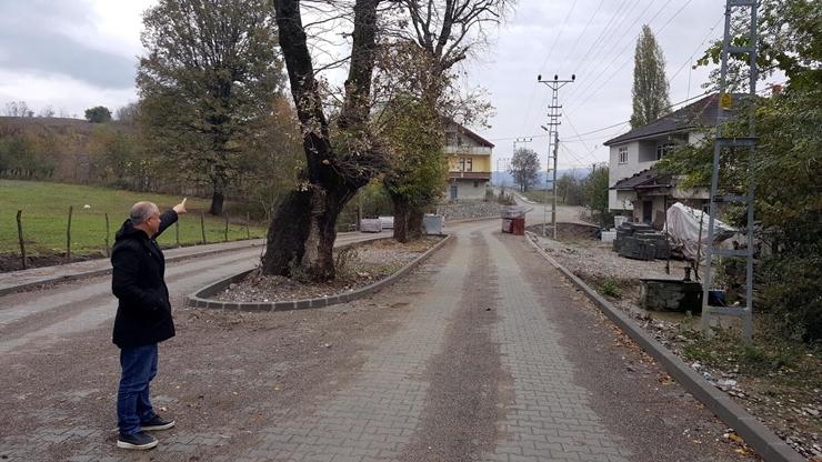 Genişlettikleri yolu ağaçların üzerinden değil yanından geçirdiler