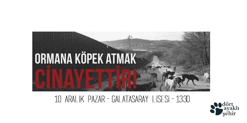Hayvanlar için de Adalet Eylem Çağrısı: 10 Aralık Pazar Galatasaray Lisesi önü