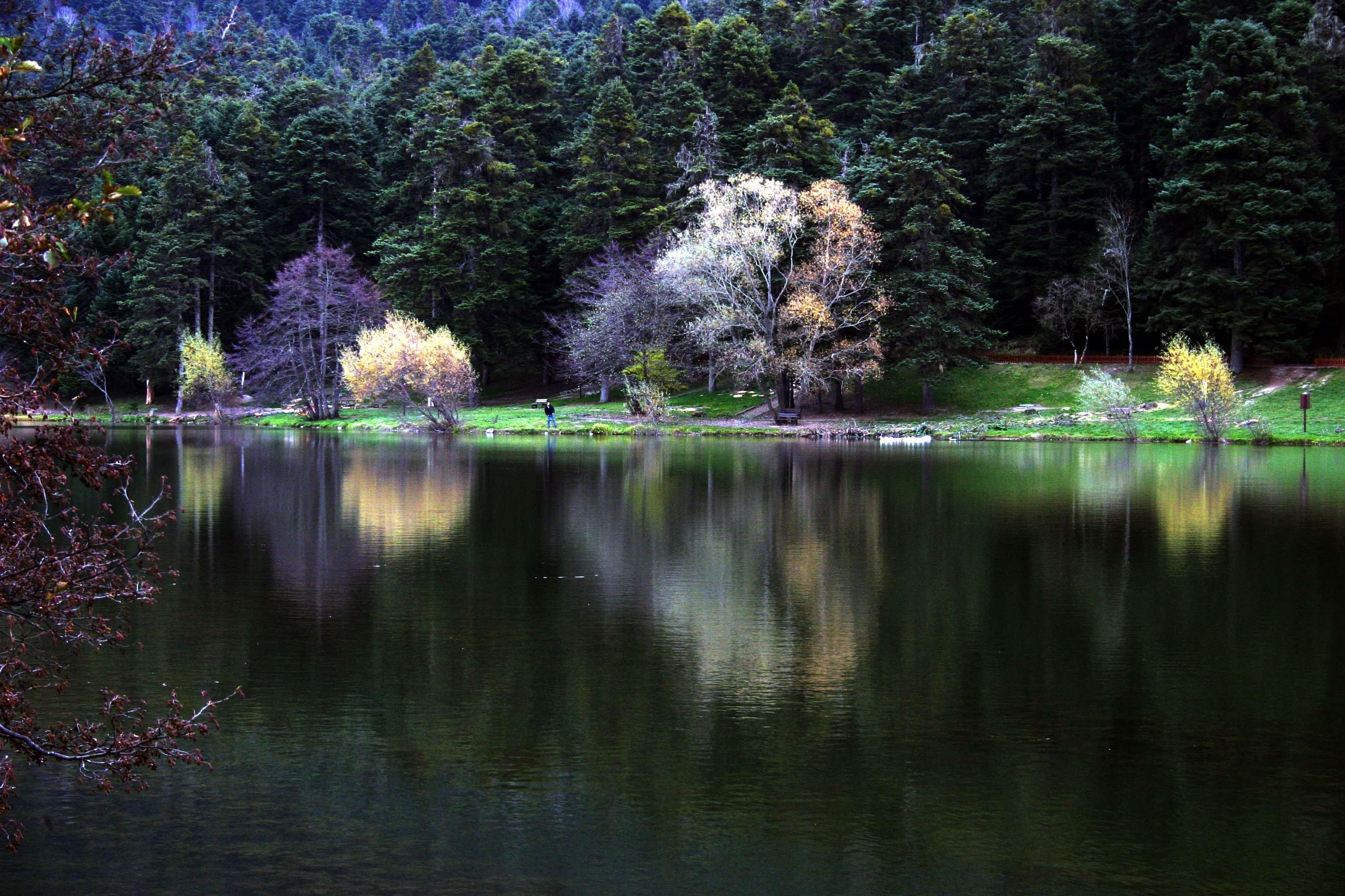 """Bolu'daki Gölcük Milli Parkı'nı """"işletmeye"""" açtılar, ormana köşk ve """"butik"""" otel yapacaklar!"""