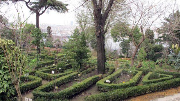 Diyanet İşleri'ne devredilen Türkiye'nin en eski botanik bahçesinin akıbeti meçhul!