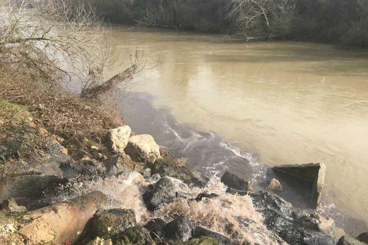 Sakarya Nehri, Kuzey Ormanları bitişiğine kurulu OSB'den dökülen kimyasal atıklarla simsiyah oldu