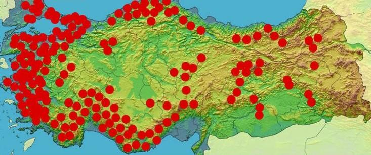 Türkiye'nin hali: Ormanın ne önemi var, mühim olan mermer!
