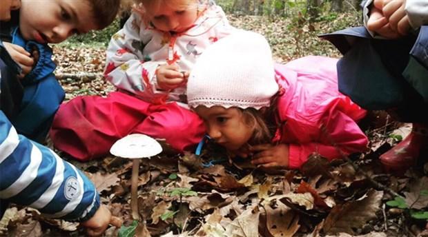 Ormana düzenli giden çocuklarda gözlemlenen 5 pozitif değişiklik
