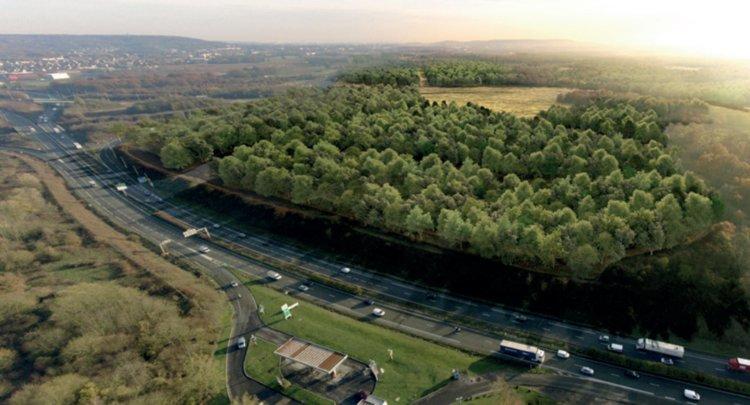 Paris'e hava kirliliği ile mücadele için 1 milyon ağaçlık ormanlık alan oluşturulacak