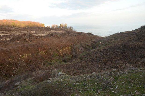 """Rusya'nın yıllık 750 milyon dolar kar edeceği """"Türk Akımı"""" projesi için Istrancalarda orman katliamı başladı"""