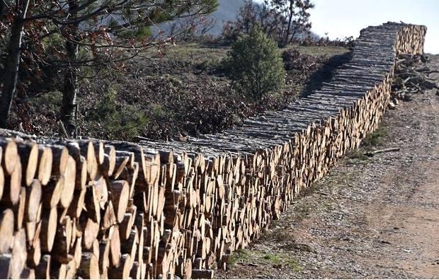 Çanakkale Atik Hisar Barajında Ağaç Katliamı Yeniden Başladı!
