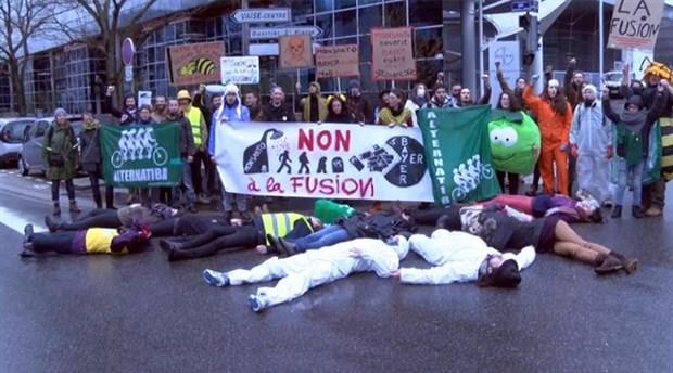 Avrupalı yaşam savunucuları tepkili: Tohumda ve tarım ilacında GDO'lu ürün kullanmayın