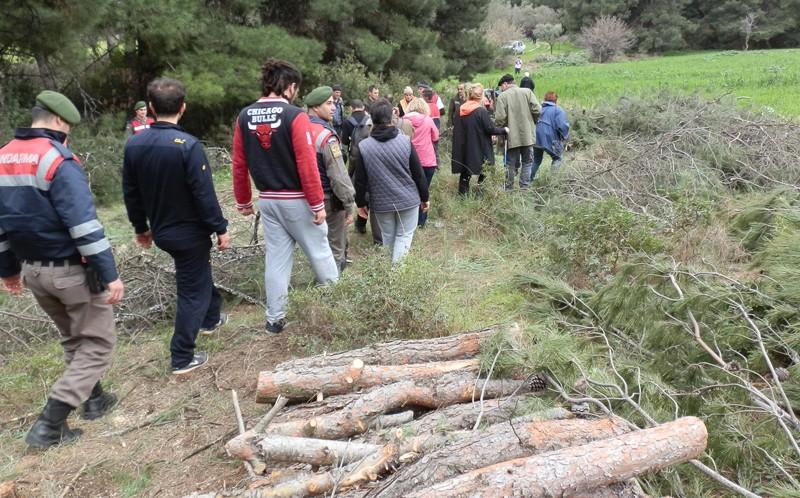 Doğa savunucuları Foça Ilıpınar ormanındaki ağaç kesimlerinin derhal durdurulması istedi