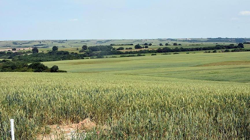 Edirne'de Mahkeme, tarım arazisinde patlayıcı deposunu reddetti