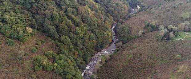 Ordu'daki Turnasuyu Irmağı HES projesine yürütmeyi durdurma kararı