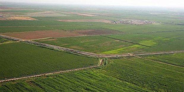 Kırklareli'nde 8 ova koruma altına alınarak tarımsal SİT alanı ilan edildi