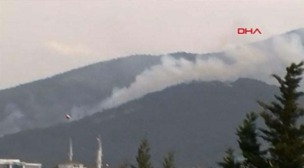Aydos Ormanları'nın birçok noktasında eş zamanlı yangın çıktı