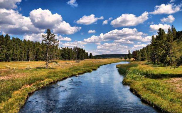 AYM'den çevre dersi: Kanalizasyonun akarsuya bağlanması hak ihlali