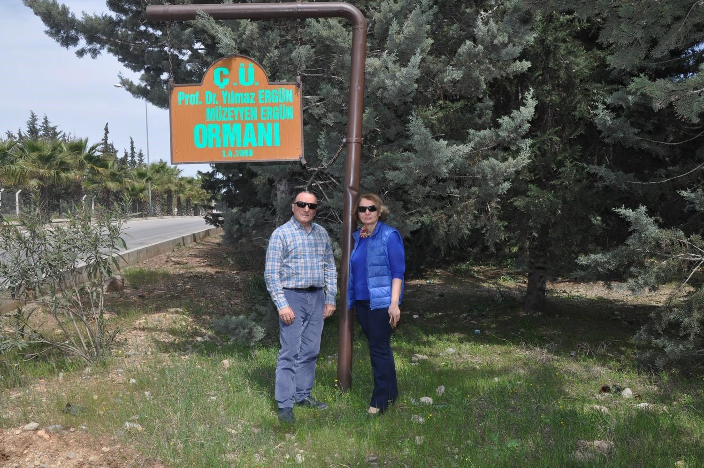 Çukurova Üniversitesi yerleşkesine tek başına 35 bine yakın ağaç dikti