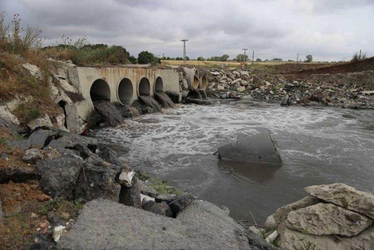 'Ergene Nehri öldü, şimdi çevresini öldürüyorlar'