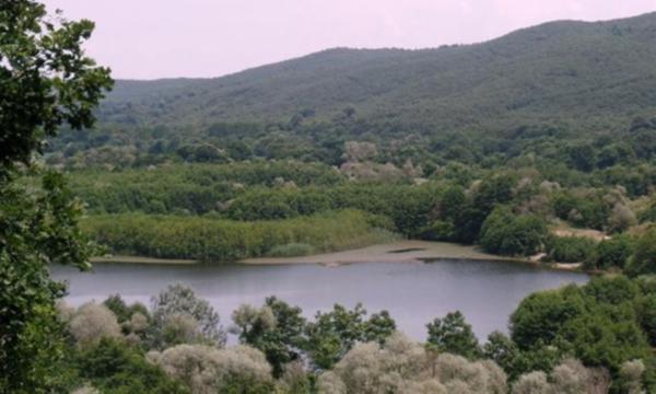 Çatalca ormanlarına maden tehdidi