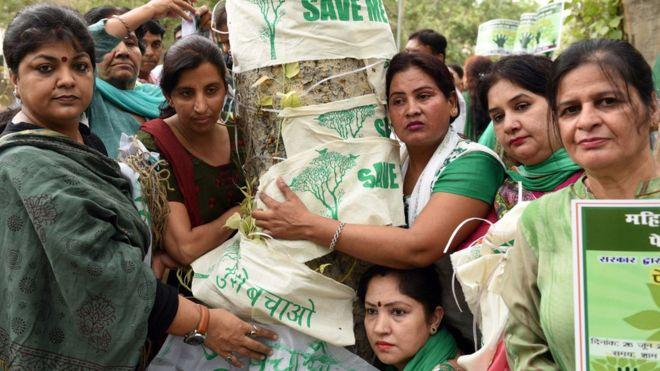 Yeni Delhililer eylemleri ve kararlılıklarıyla 16 binden fazla ağacı kurtardı