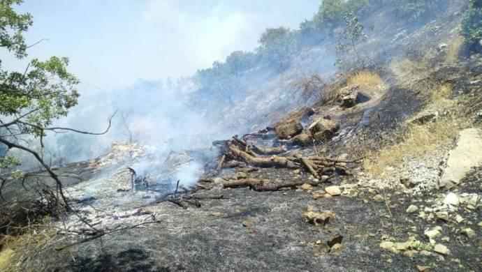 Cudi Dağı'nda yangın: Sebebi top atışları olabilir