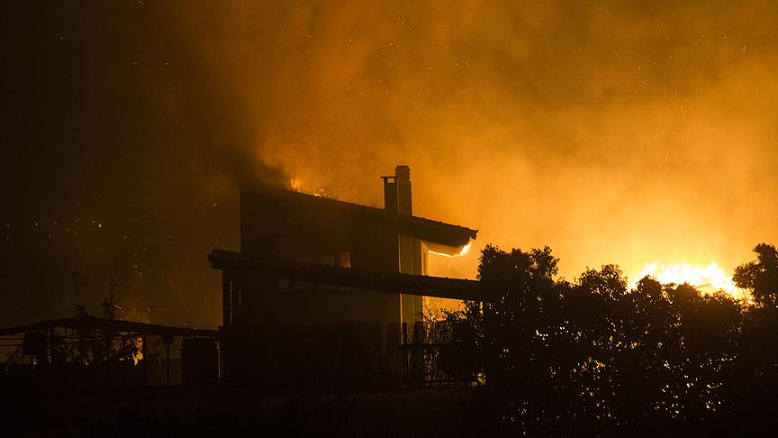 Yunanistan'daki orman yangınlarında en az 79 kişi öldü