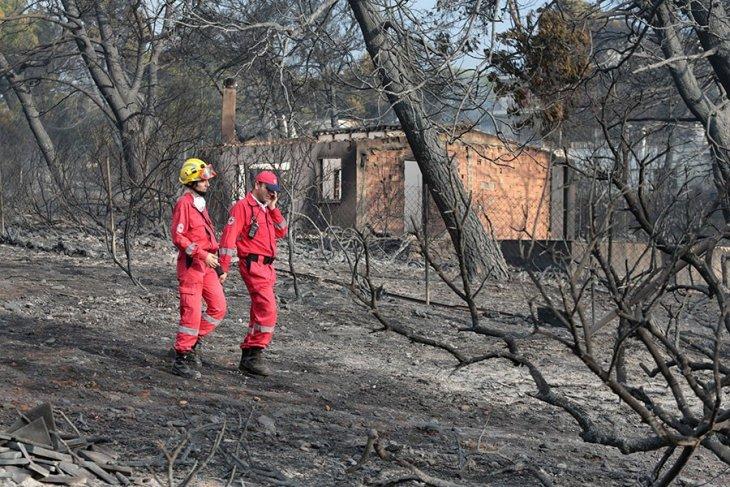 TMMOB: Atina'daki yangınlar Türkiye açısından da uyarı