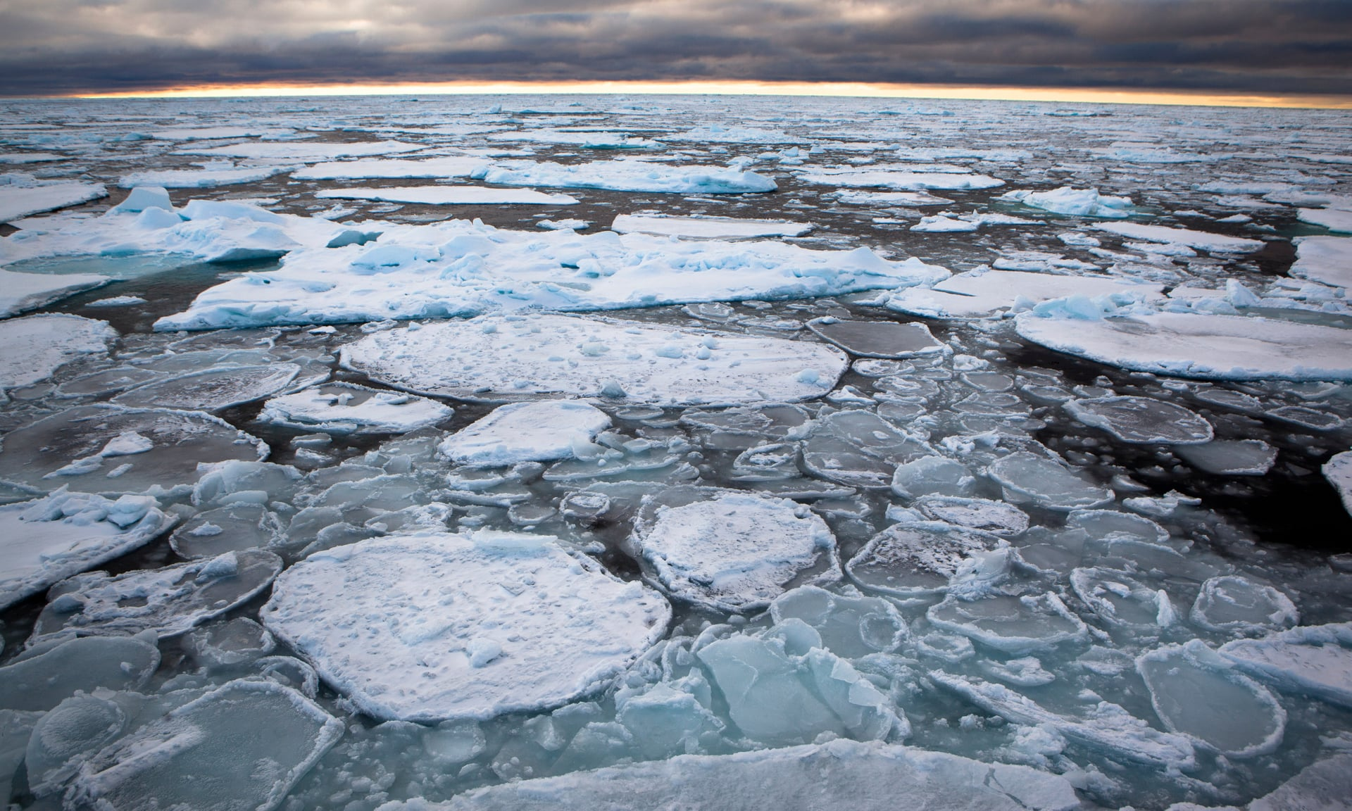 Kuzey Kutbu'nun en kalın ve sert buz kütleleri tarihte ilk kez kırılmaya başladı