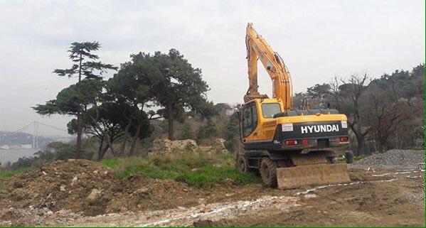 Fethi Paşa Korusu'nu yağmalayan Mehmet Cengiz şimdi de kuruttuğu ağaçları kesmek için izin istiyor!