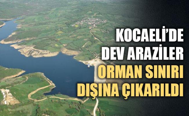 Kocaeli'de dev araziler, orman sınırı dışına çıkarıldı