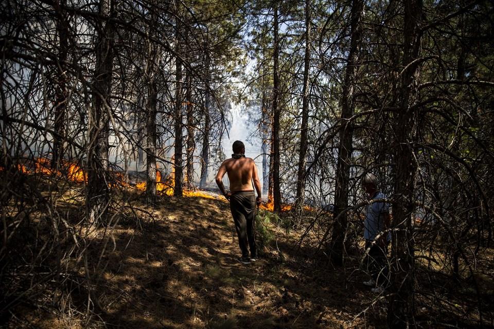ODTÜ ormanında çıkan yangını vatandaşlar söndürdü