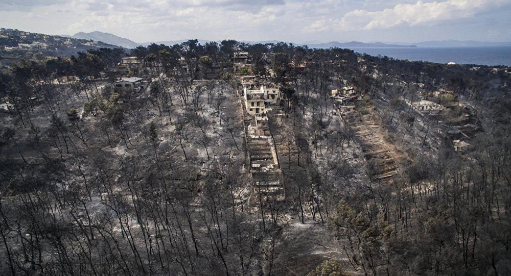 Yeni harita, orman kayıplarının nedenlerini ortaya çıkardı