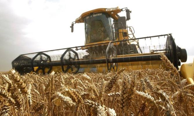 Dünyaya en fazla 26 gün yetecek buğday kaldı